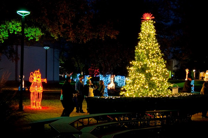Community members gathered to view the President's Tree during the 2015 Holiday Lighting