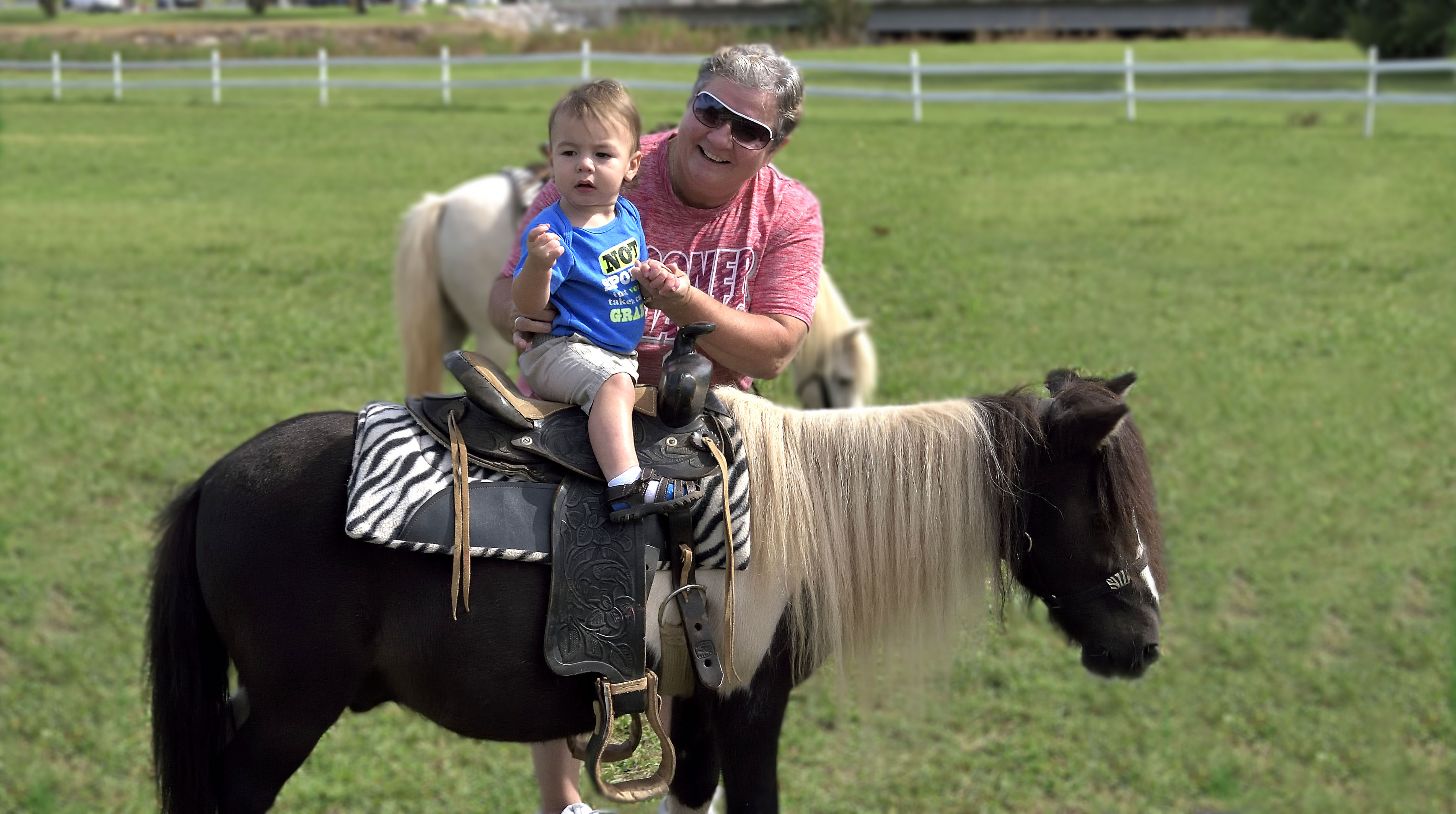 Small child rides a pony at the Atkinson Heritage Center during Heritage Days 2016.
