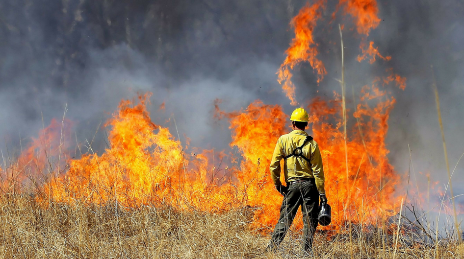 man monitors controlled burn