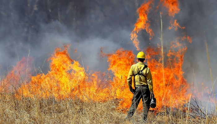 a man in a yellow shirt looks at a wildfire